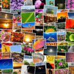 Un logiciel de classement de photo pour réduire le travail des professionnels